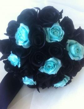 Black & Aqua 33