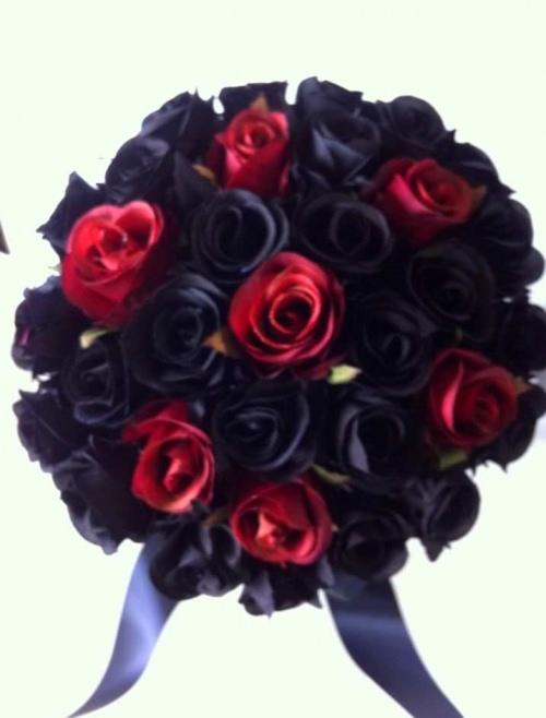 Black & Red 33