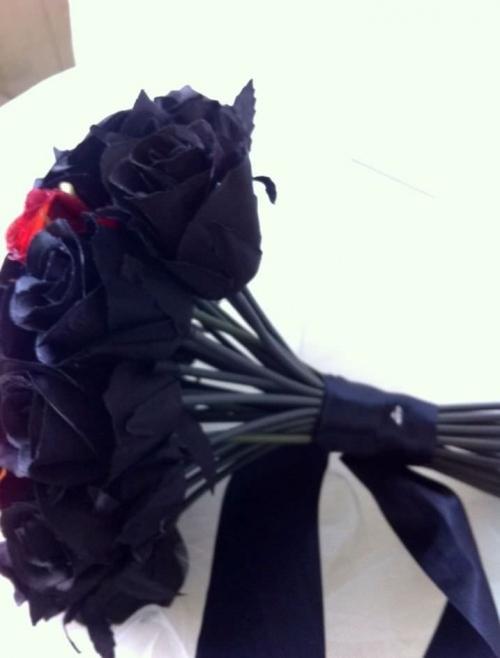Black & Red 33.