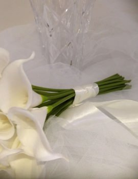 Calla Iilly 18 Stems.