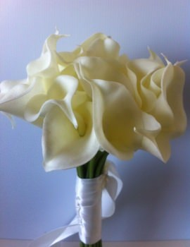 Calla LIlly 27 Stems