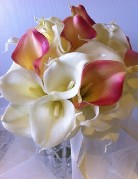 Calla Lilly 45 stems.