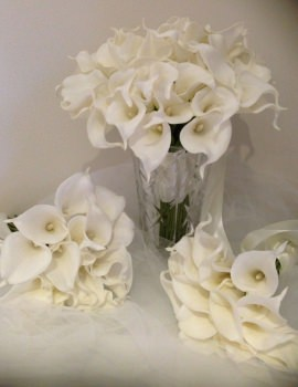 Calla Lilly 6 package