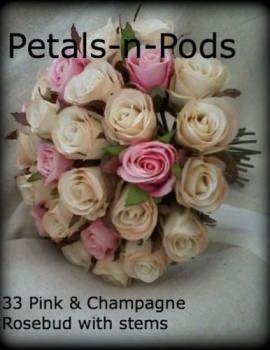 Champ & Pink 33