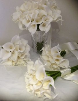 Ivory Calla Lilly 54 Stems Package
