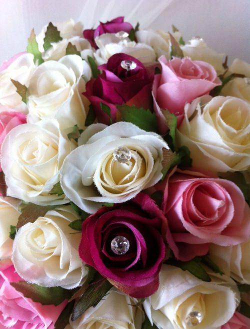 Ivory, Hot pink & Pink 60