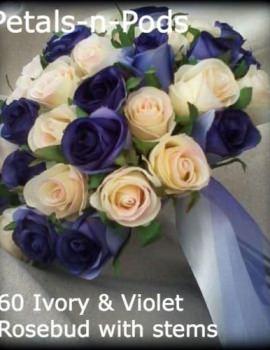 Ivory & Violet 60