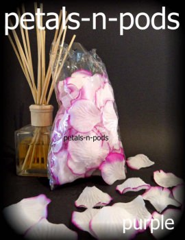 Petals - Purple