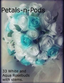 White & Aqua 33