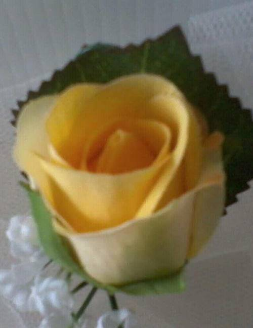 yellow-buttonholes-01